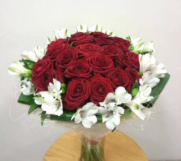 roos_inkaliilia